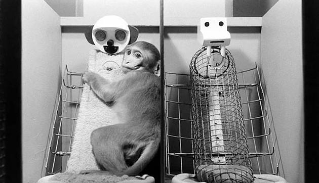 İnsanlığın en tuhaf ve karanlık yanlarını ortaya çıkarmış 26 psikolojik deney